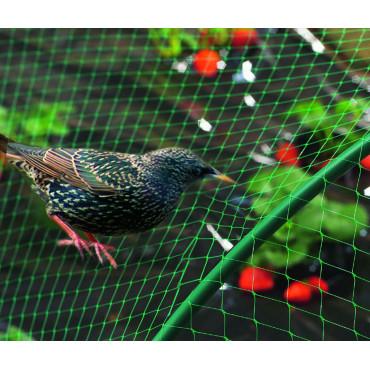 Malla anti pájaros 4x6m verde BIRDNET Nortene
