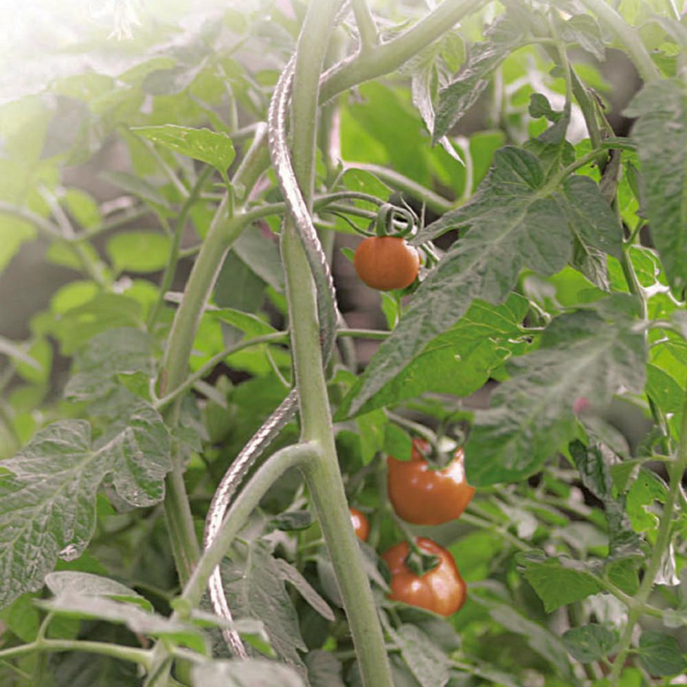 Tutor tomate espiral TOMATO SPIRAL Nortene