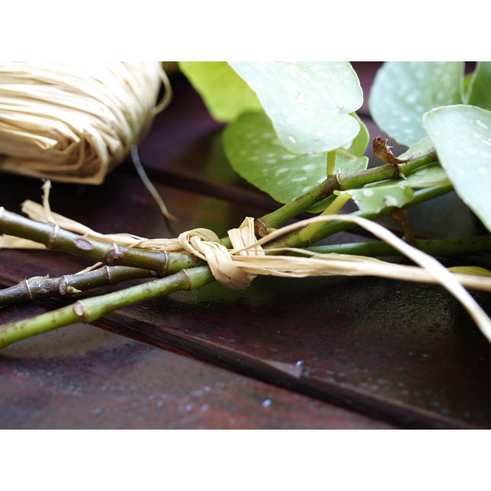 Rafia natural RAPHIA 150 gr